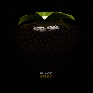 13-1-14-black-berry