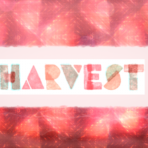 18-1-14-harvest
