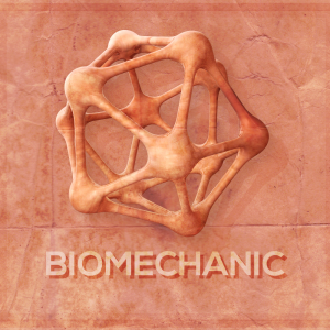 2-11-14-biomechanic
